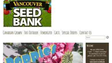 Photo of Vancouver Seed Bank Review