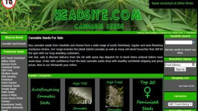 Photo of HeadSite.com Seed Bank Review