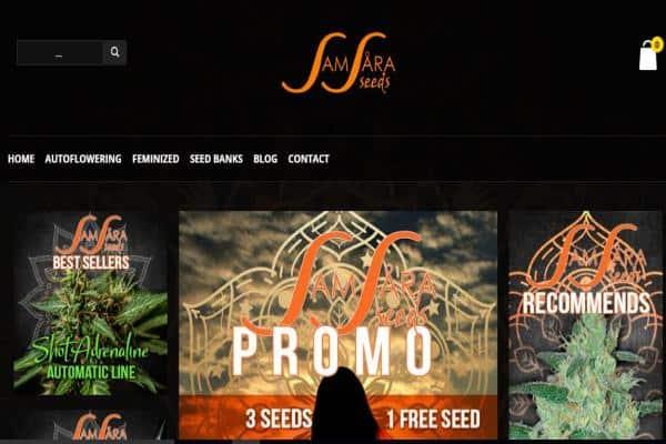 Samsara Seeds Review
