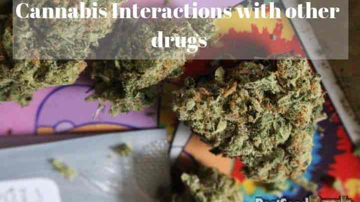 Photo of Cannabis Interactions with other drugs
