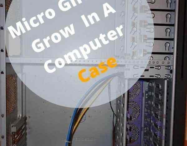 Photo of Micro Ghetto Grow In A Computer Case.