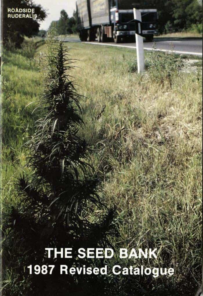 roadside ruderalis the seed bank 1987