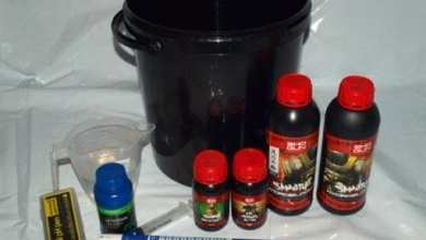 Photo of Beginners Guide To Mixing Hydroponics Nutrient Solutions
