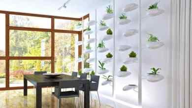 Photo of Indoor Hydroponic Vertical Garden Screen