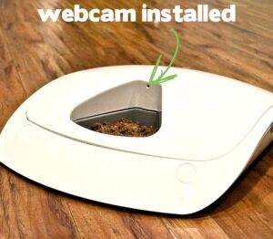 pet feeder with webcam