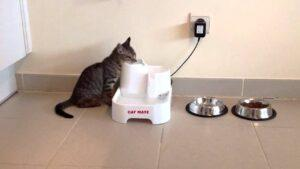cat drinking from the catmate water fountain