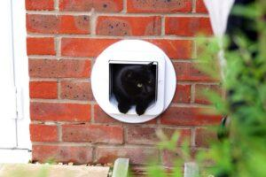 sureflap review cat door