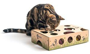 Best Interactive Cat Toy Ever! Cat Treat Maze & Puzzle Box Game for Cats