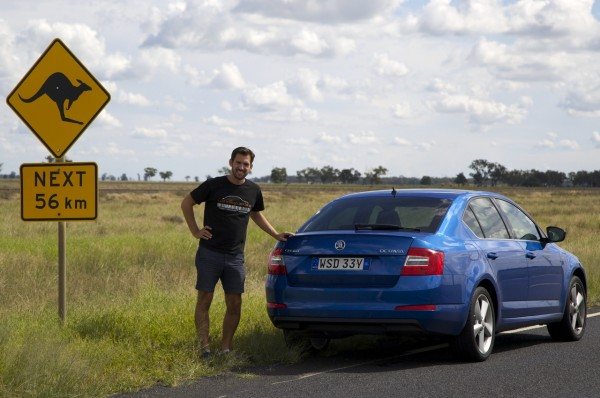 Skoda Octavia kangaroo sign2