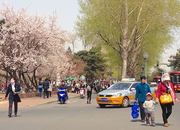 13. Changchun street scene 6