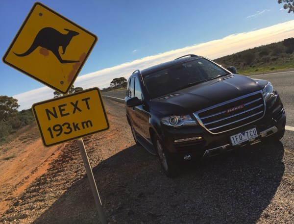 Haval H8 Kangaroo sign