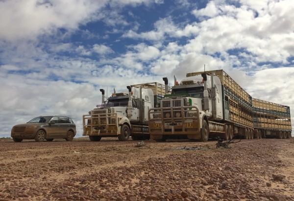 Haval H8 Road Train mud 1
