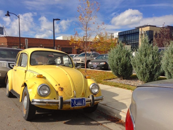 VW Beetle Bozeman MT