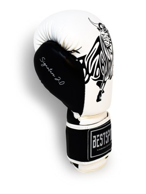 Signature 2.0 Boxing Gloves White