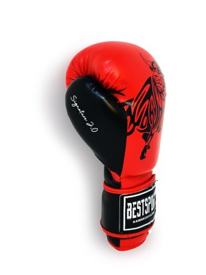 Signature 2.0 Boxing Gloves