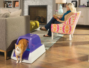Best Litter Box For Cats Product Reviews