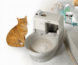 Litter Box For Cats