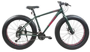 Alton Mammoth 2 0 Fat Tire Bike