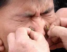 Bee Venom Treatments