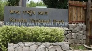kanha-national-park_5