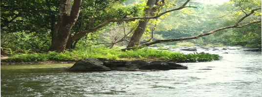kuruva tourist places in wayanad