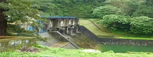 nirar dam tourist places in valparai