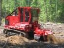tree removal stump grinder