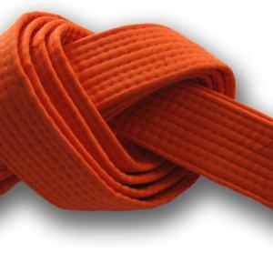 Orange Blelt