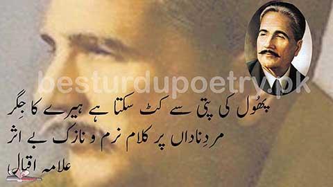 phool ki patti se kat sakta ha heere ka jigar - allama iqbal poetry