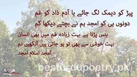 pair ko deemak lag jaye - amjad islam amjad - besturdupoetry.pk