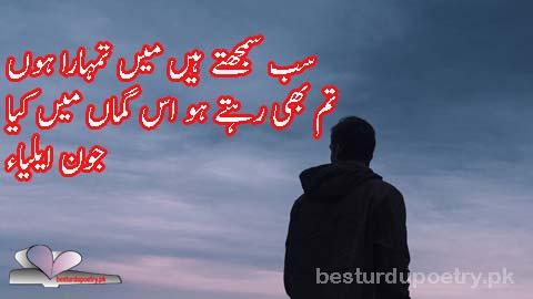 sab samajty han main tumhara hoon - john elia poetry in urdu 2 lines - besturdupoetry.pk