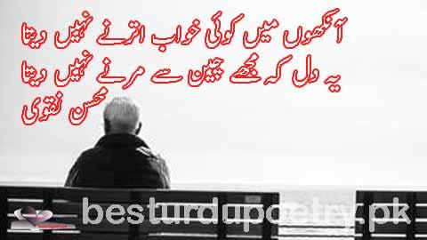 aankhon main koi khwab utarnay nahi deta - besturdupoetry.pk