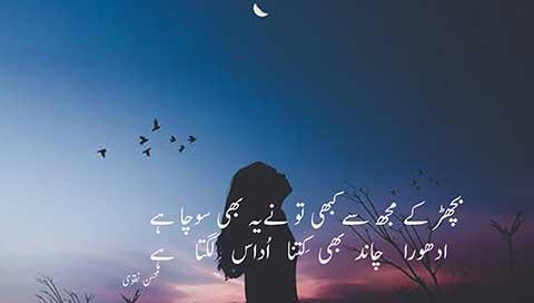 bichar kay mujh say kabhi tu nay yeh bhi socha hay - besturdupoetry.pk