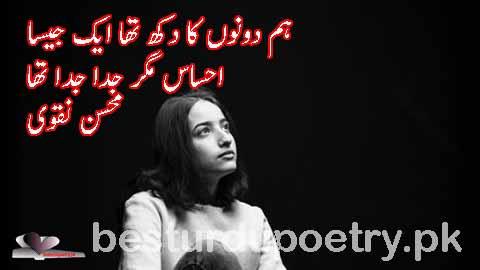 hum doono ka dukh tha ek jesa - mohsin naqvi poetry in rdu -  besturdupoetry.pk