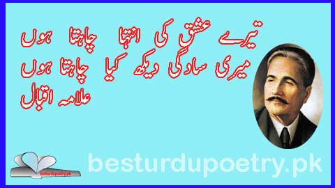 tere ishq ki inteha chahta hoon ghazal in urdu - allama iqbal poetry in urdu - besturdupoetry.pk