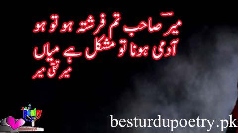 meer sahib tum farishta ho tu ho - mir taqi mir poetry in urdu - besturdupoetry.pk