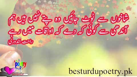 attitude poetry in urdu - shakhon say toot jain - besturdupoetry.pk