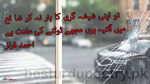 tu apni shesha gari ka hunar na kar zaya - aaina poetry - besturdupoetry.pk