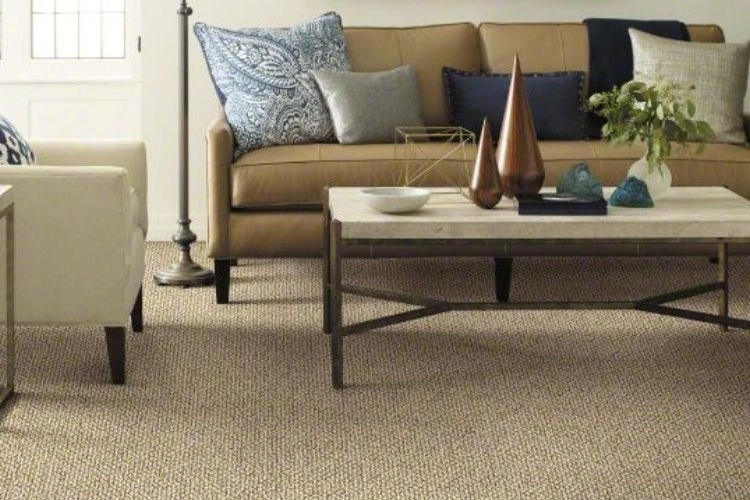Best Vacuum For Berber Carpet 2020 Recommendations | Berber Carpet For Stairs | Best Quality | Contemporary | Decorative | Textured | Marine Backing