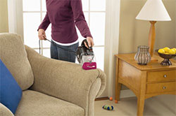 Pet Hair Nozzle on Upholstery