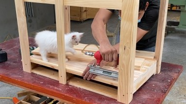 Fun House Design Ideas for Your Pets • How to Build a Dog House that is Perfect for Your Dog