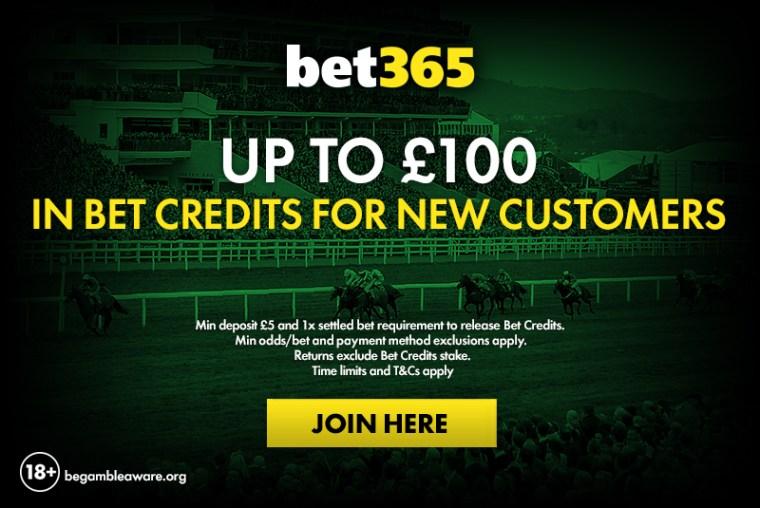 Bet365 Cheltenham betting