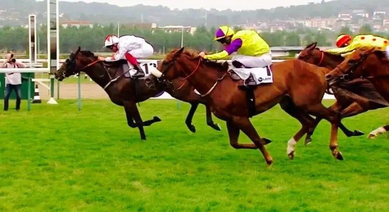 Betfair and Betdaq live streaming of pictures