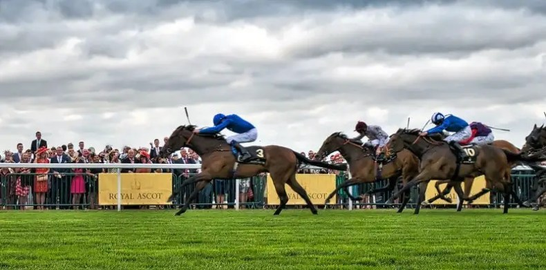 Horse Racing Dosage Index Finding Winners