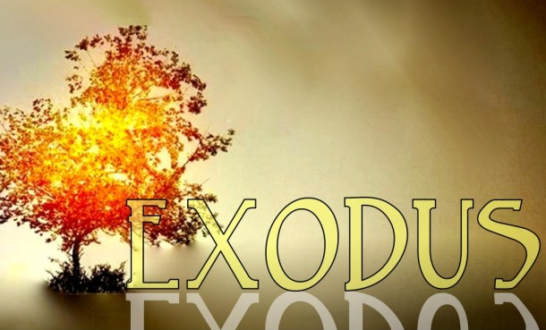 Exodus5