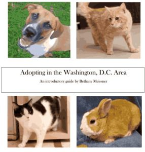 "Cover of ""Adopting in the Washington, DC Area"" with a dog, 2 cats, and rabbit"