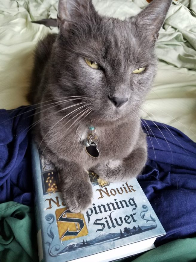 Gray cat on Spinning Silver book