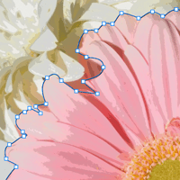 idraw_art_app_daisy