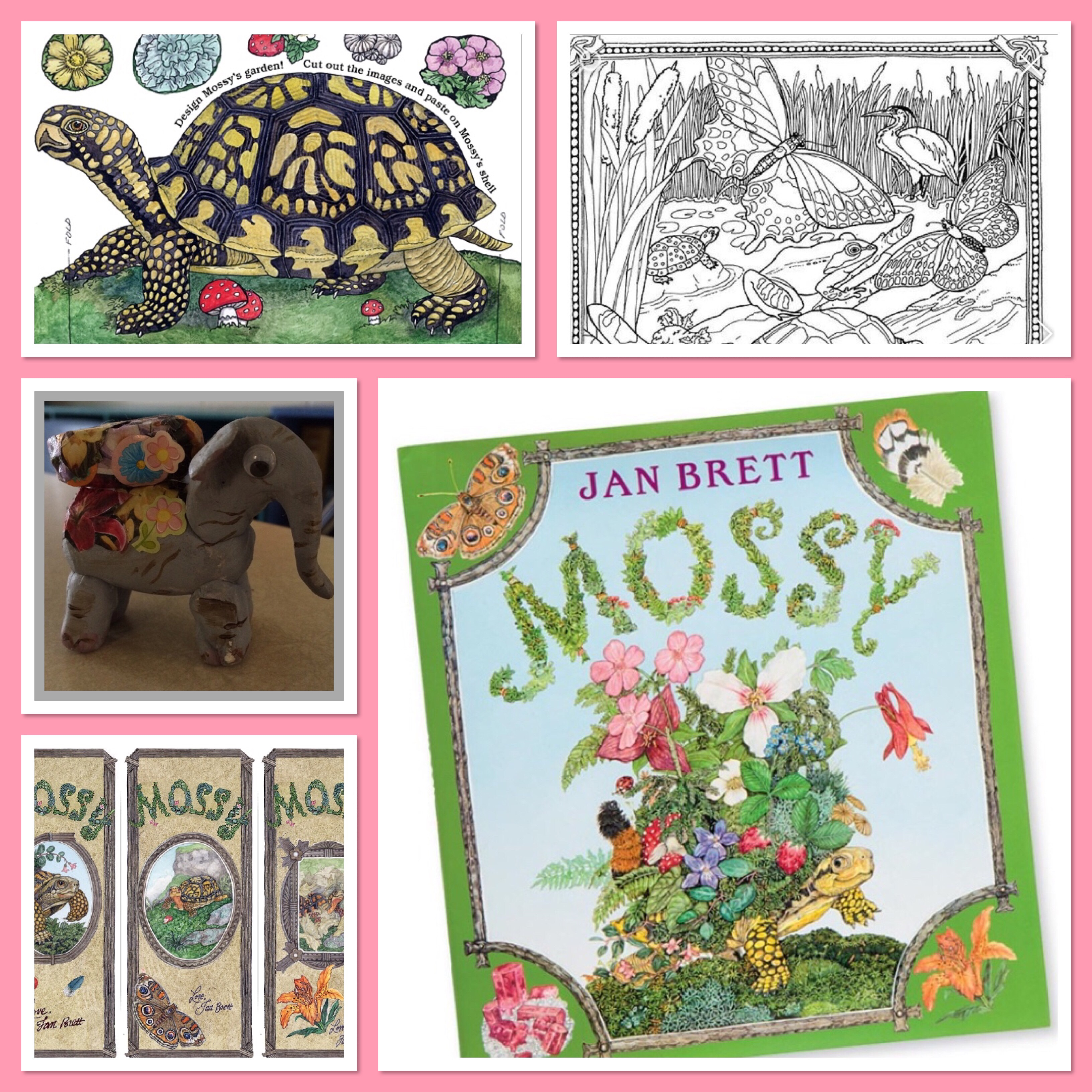 Mossy By Jan Brett And Activities
