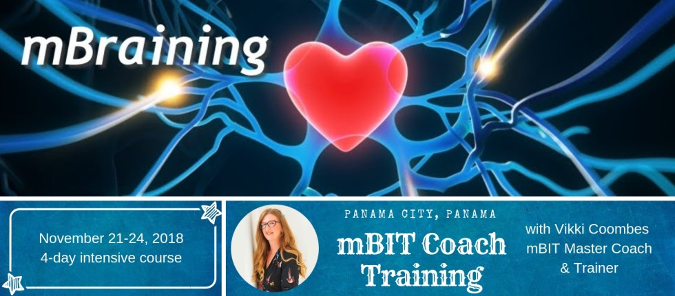 mBIT Coach Training (2)
